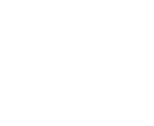 logo-2001